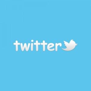 Twitter-300x3001