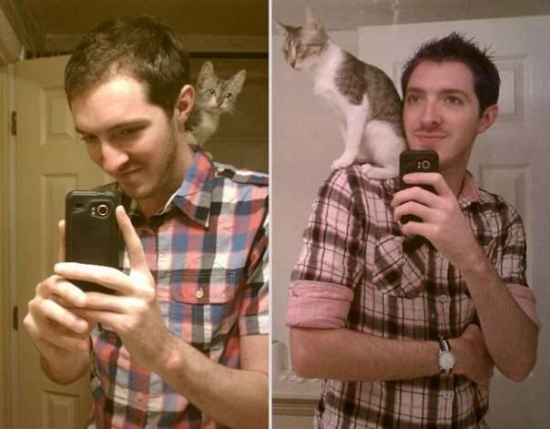 animais-antes-depois-11
