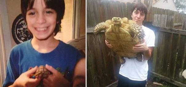 animais-antes-depois-16