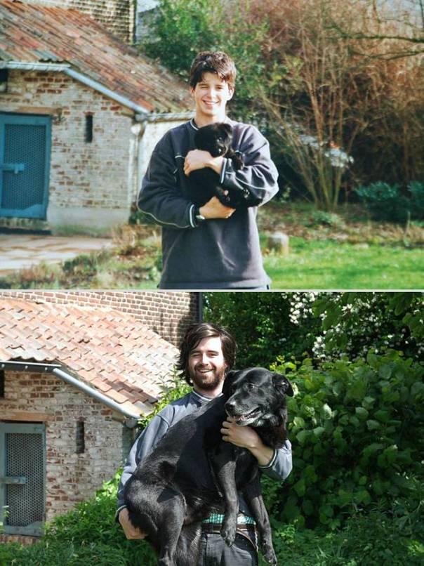 animais-antes-depois-9