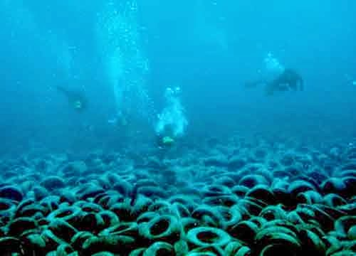 underwater-tire-removal-florida_via-broward_county_472