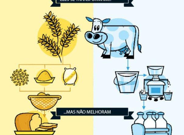 leite-pao-integral
