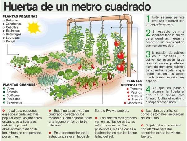 como-fazer-horta-casa-ocupando-apenas-1-m2-11